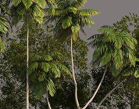Tree Pack 01 3D model