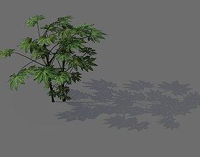 3D Game Models - Forest - Shrubs 03
