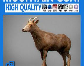 Mountain Goat 3D