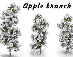 Apple branch 3D model