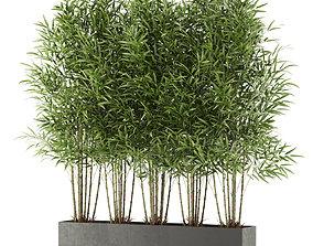 Plants collection 480 3D