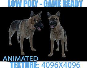 3D asset Dog Animated
