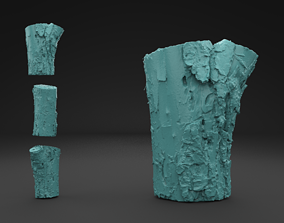 3D print model Scanned Old Log root