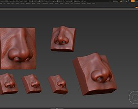 nose low poly and high poly 3D model
