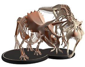 Tyrannosaurus VS Triceratops Skeleton 3D asset