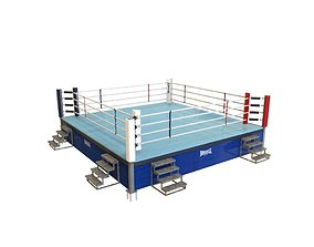 Fighting Ring 3D asset