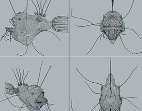 3D asset Angler Fish