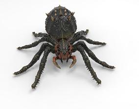 Spider 3D model rigged realtime