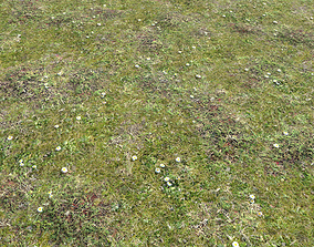 Forest ground Pack PBR 2 3D model