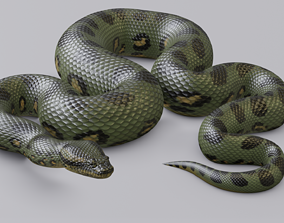 3D model realtime Animated Green Anaconda