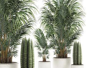 3D Decorative palm in a white flowerpot 520