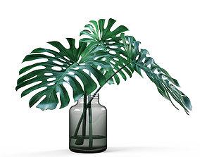 Monstera vase 3D
