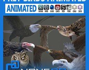3D model Pack - Prey Birds Animated