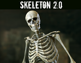 Skeleton 2 3D model rigged