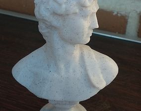 David Bust for 3d Print