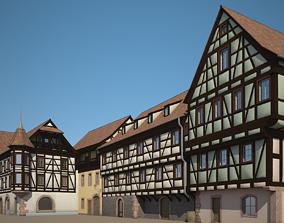 Medieval Houses VI 3D