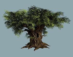 Oak Tree 3D model VR / AR ready