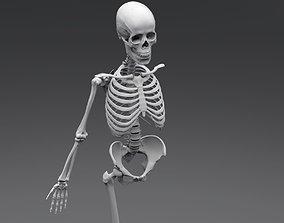 3D printable model Human Skeleton Full Articulated