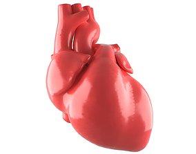 Human Heart Royalty Free 3D model