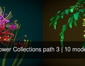 Flower Collections path 3 3D