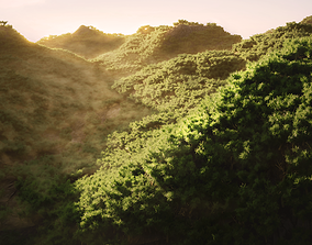 Wide Forest Scene 3D