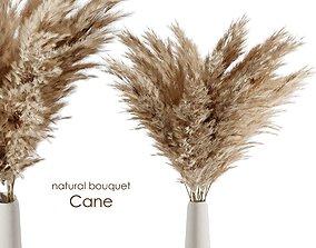 3D Natural cane bouquet