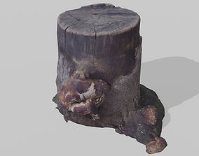 3D model Realistic Stump scanned