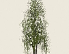 Game Ready Willow Tree 09 3D model