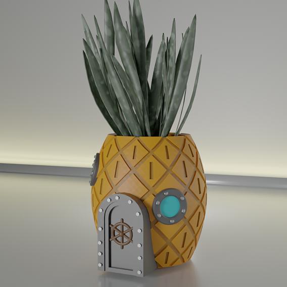 succulent pot sponge bob hause