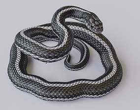 Rigged Black White Snake Rigged 3D model low-poly