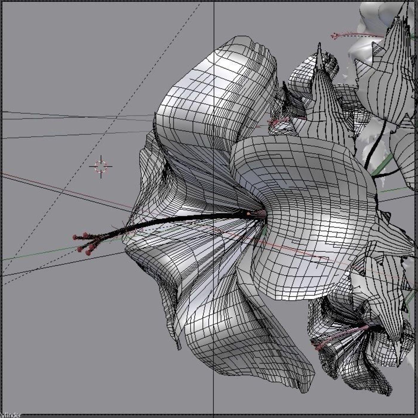 Hibiscus Flower 3D Model