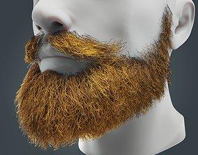3D model Beard RealTime 18 Version 2 Low Poly