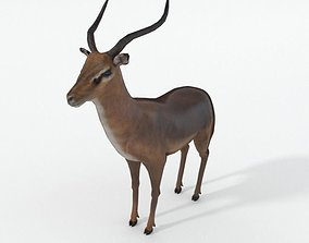 3D model game-ready Impala