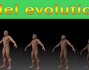Human evolution model 3D