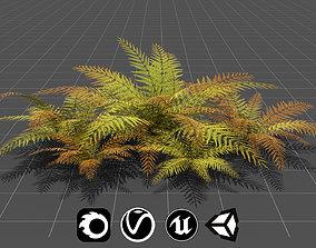 3D asset Big Fern - High Quality Low-Poly Models