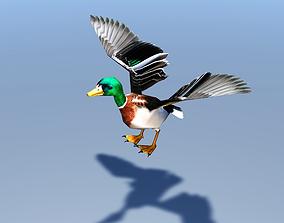 Duck Bird 3D model