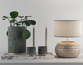 Decorative Set with Desert Privet Plant 3D
