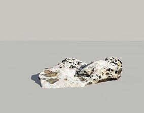 sandstone Whale Bones 3d Scanned Model