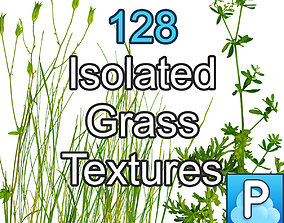 Isolated grass textures 3D