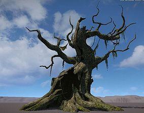 Ancient Tree V17 3D model