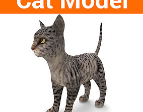 game-ready 3d Pet Cat low poly Model