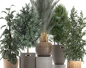 3D model Plants in baskets for the interior 632