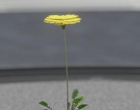 Low-Poly Dandelion Flower Version 1 - Object 7 3D model