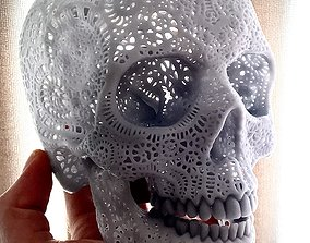 sculptures Filigree Anatomical Skull 3D print model