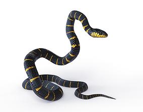 Rigged Mangrove Snake 3D model