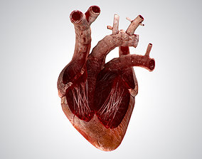 3D asset Heart Grungy Rigged Animated PBR