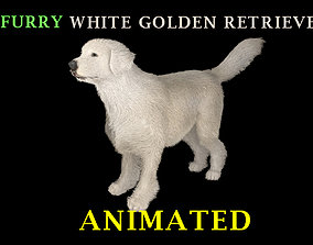 animated realistic furry White Golden 3D model