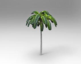 3D model game-ready cartoon Palm tree