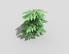 Plant island 3D model VR / AR ready