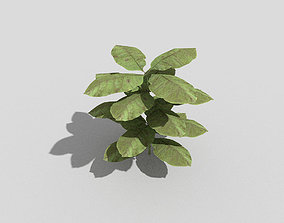 3D asset realtime Plant shrub